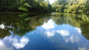 辺士名湖2
